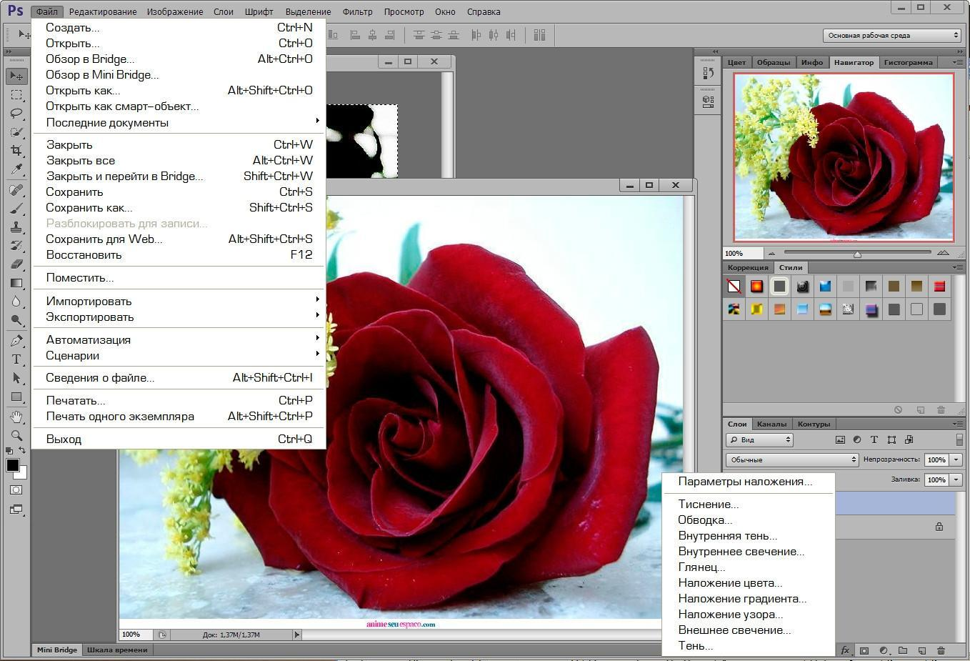 Adobe Photoshop Cs5 Free Download Full Version With Crack For Mac