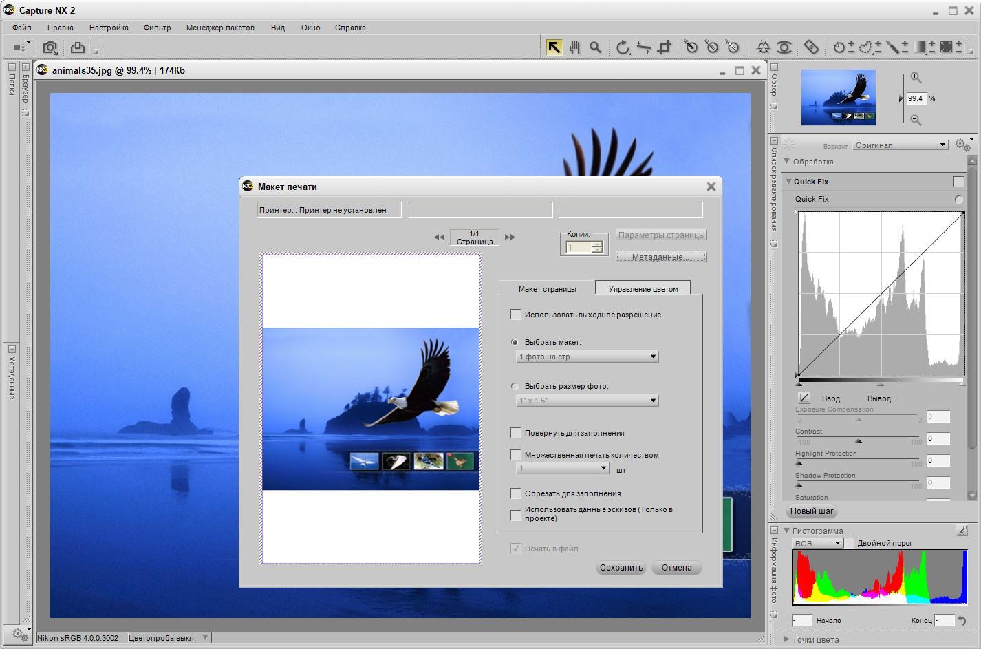 Luckyisocorporation capture nx 2 crack download nikon capture nx2 baditri Gallery